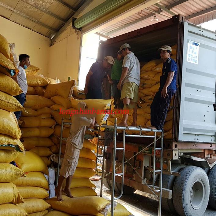 Vận chuyển hạt sen tại cơ sở Tuấn Loan