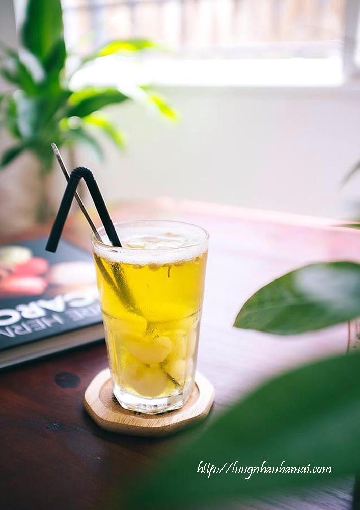 Hướng dẫn cách pha trà nhài long nhãn nhục