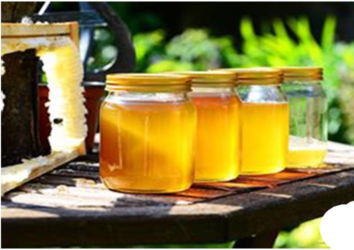Những câu hỏi thường gặp về mật ong nhãn-2