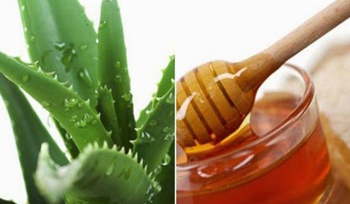 Bài thuốc nha đam và mật ong