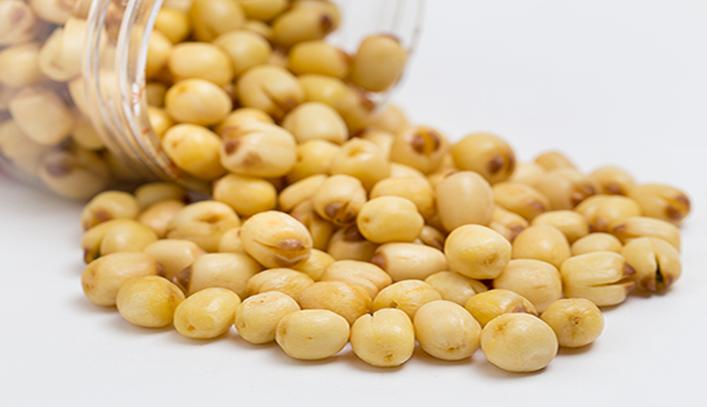 Ăn hạt sen có béo không